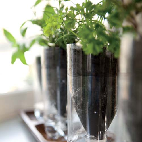 self-watering-herb-planters